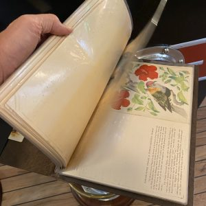A collection of 24+ Vintage P&O SS Carthage Menus